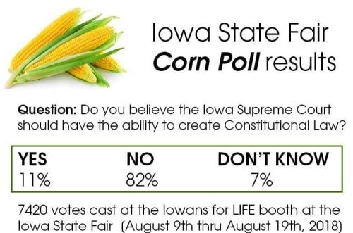 Corn-Poll